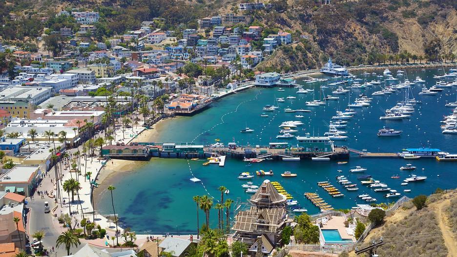 Catalina-Island-30837